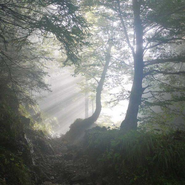 Itinerario di Trekking Nebrodi