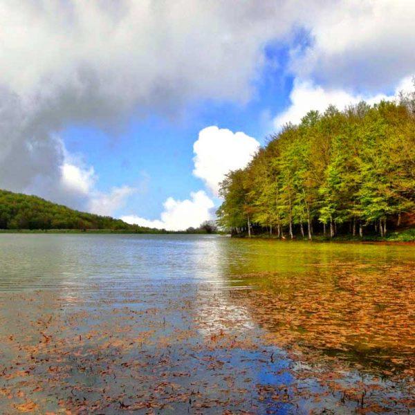 Lago Biviere Cesaro